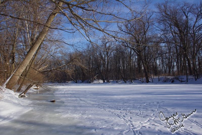 Defrosting River