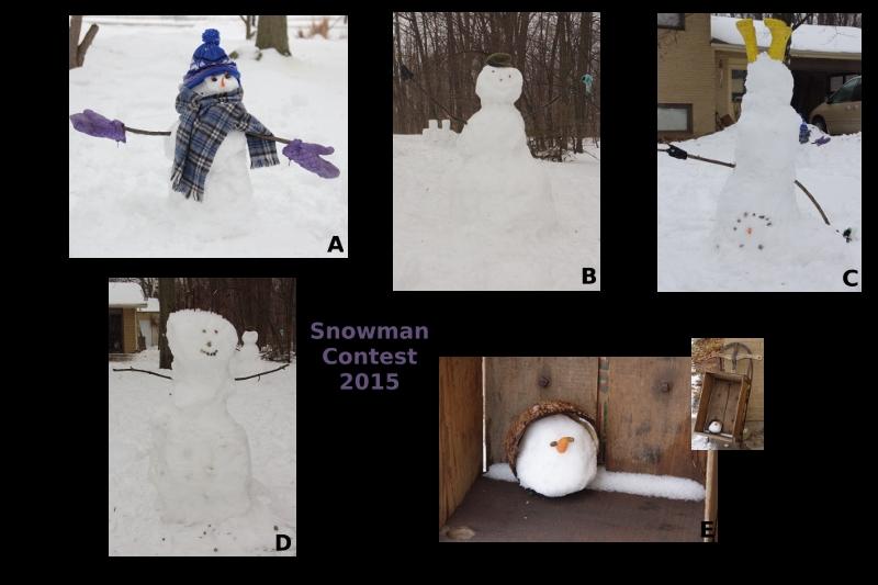 SnowmenContest