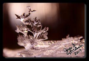 IMG_9315.ice_phatch