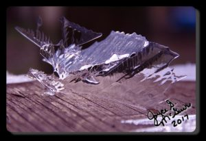 IMG_9347.ice_phatch
